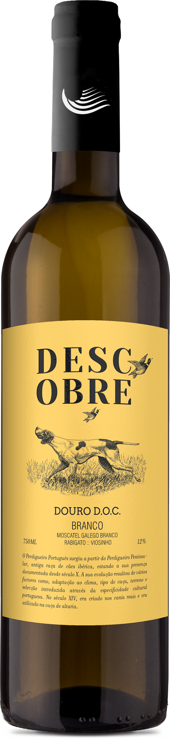 descobre-doc-douro-branco- image